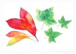 大人のぬり絵 水彩画(7つの葉っぱを描く)