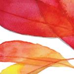 大人のぬり絵-水彩での彩色画-7つの葉っぱ