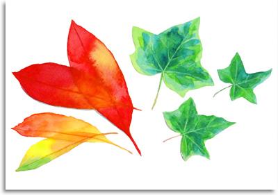 水彩の技法(ウェットオンドライ~バックラン)を使った7つの葉っぱの水彩画
