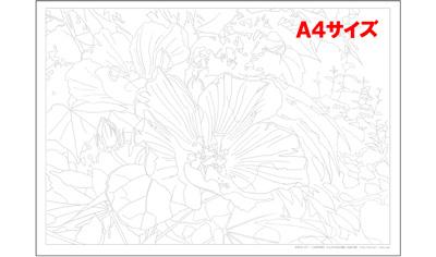 水彩のぬり絵の線画ダウンロード7