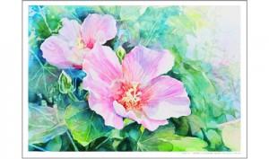 水彩のぬり絵の彩色画のダウンロード5