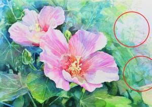 花の水彩画(塗り絵)の描き方n1-17