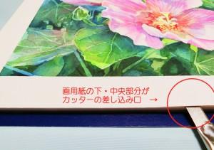 花の水彩画(塗り絵)の描き方n1-19