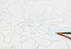 花の水彩画(塗り絵)の描き方n1-2