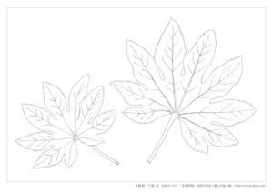 水彩9つの技法のぬり絵(線画)3