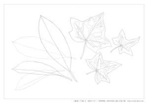 水彩9つの技法のぬり絵(線画)2
