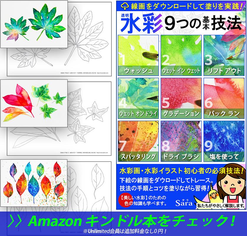 水彩の技法(描き方、塗り方、ぬり絵、水彩画)に関する本の表紙。ウォッシュやウェットインウェットやスパッタリングに塩の技法写真を掲載。