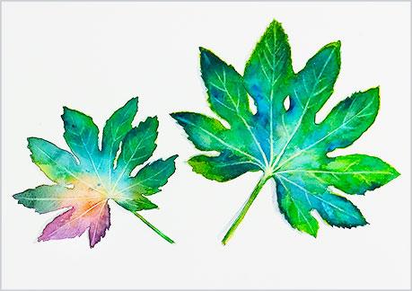 やつでの葉の水彩画・水彩イラスト完成