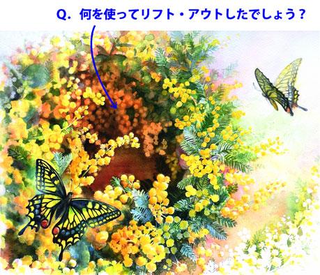 水彩画(水彩技法・リフトアウトを使ったミモザの花と蝶の絵)