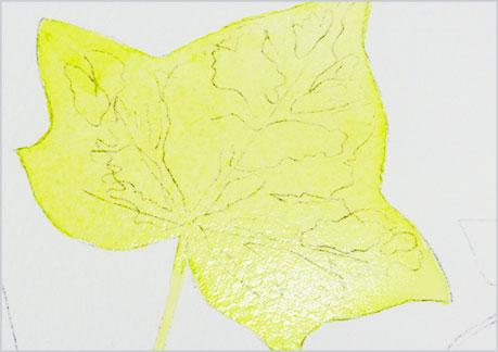 水彩画、植物の葉っぱの描き方-ウェットオンドライの手順1