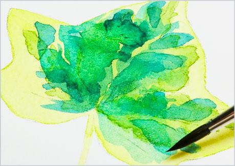 水彩画、植物の葉っぱの描き方-ウェットオンドライの手順4
