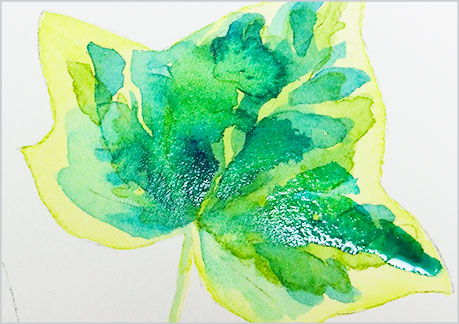 水彩画、植物の葉っぱの描き方-ウェットオンドライの手順5