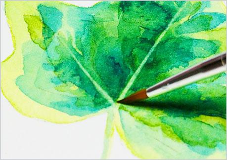 水彩画-植物の葉っぱの描き方-ウェットオンドライの手順7