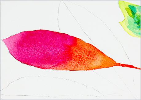 水彩画・イラスト-植物の葉っぱの描き方-グラデーションの手順4