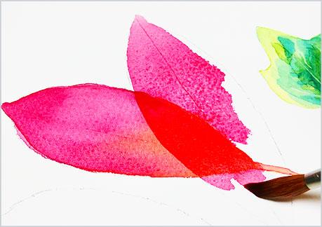 水彩画・イラスト-植物の葉っぱの描き方-グラデーションの手順6