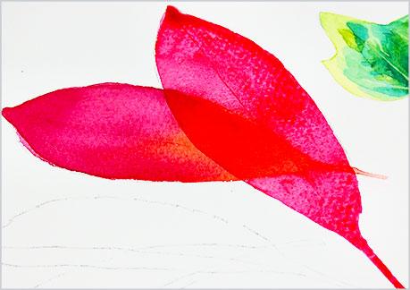 水彩画・イラスト-植物の葉っぱの描き方-グラデーションの手順7