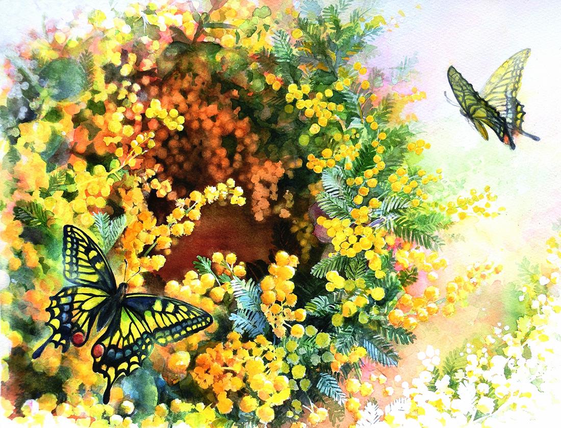 水彩画_ミモザの花と蝶の絵(水彩イラスト・絵・Watercolor painting