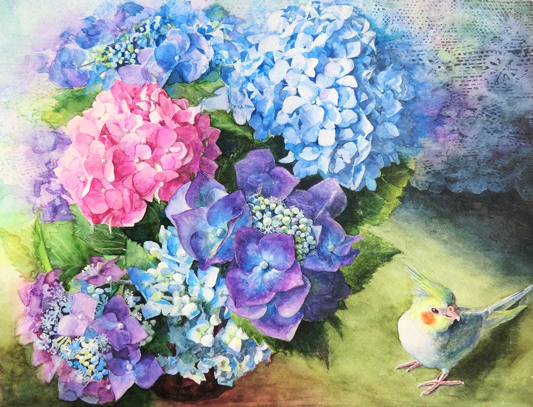 水彩画_紫陽花とオカメインコの絵(水彩イラスト・絵・Watercolor painting)