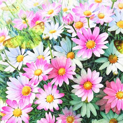 花の水彩画でウェットオンドライ使用